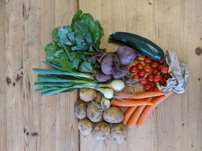 Picture of The Original Veg Box Small